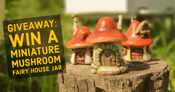 win a miniature mushroom fairy house jar by creative mom